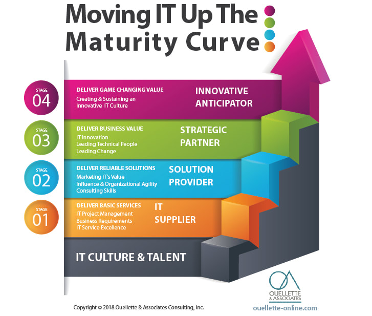 Technology Management Image: Category: IT Maturity Curve